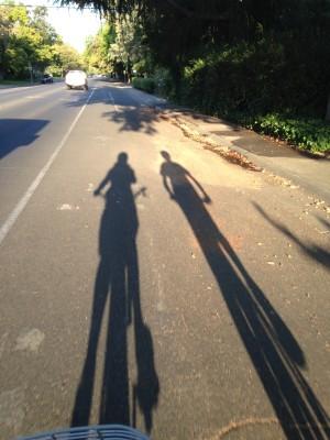 Gratitude shadow