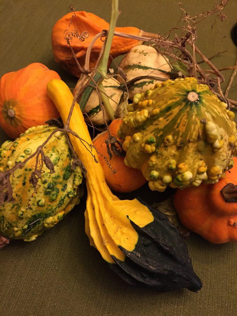 Inside The Mind of a Teacher-Mom: Poetry by Kaveri Patel pumpkin