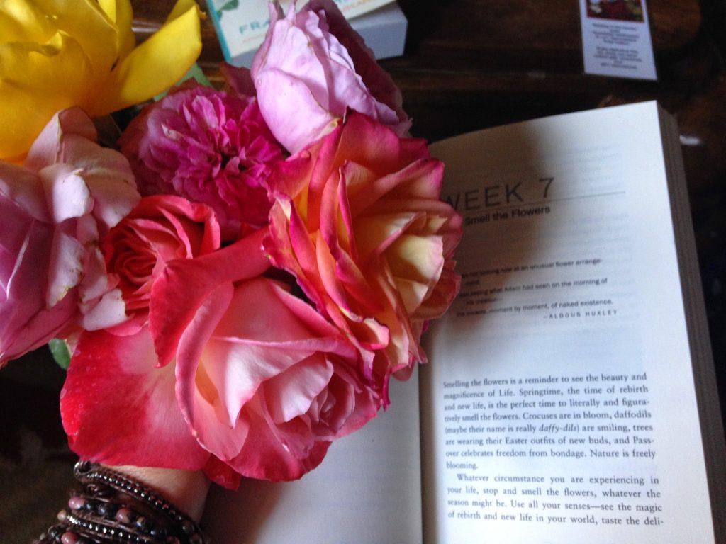 Inside The Mind of a Teacher-Mom: Poetry by Kaveri Patel