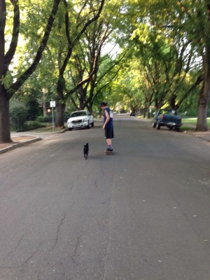 My dog and my boy, evening walk (or skate)