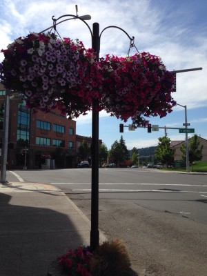 Love the flowers in Downtown Bend, Oregon