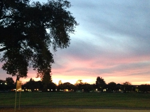 Sunset over UC Davis